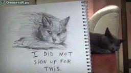 Смотреть Кошачий портрет