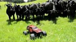 Смотреть Современный пастух