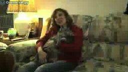Огромный котяра смотреть видео прикол - 1:25