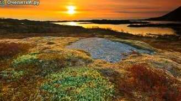 Чудесная природа Арктики смотреть видео - 3:22